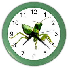 Mantis Color Wall Clocks
