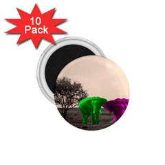 Africa  1.75  Magnets (10 pack)