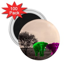 Africa  2.25  Magnets (100 pack)