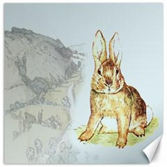Rabbit  Canvas 20  x 20