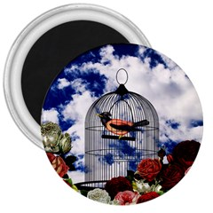Vintage bird in the cage  3  Magnets
