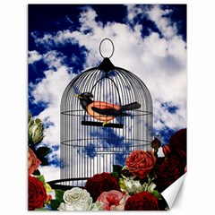 Vintage bird in the cage  Canvas 18  x 24