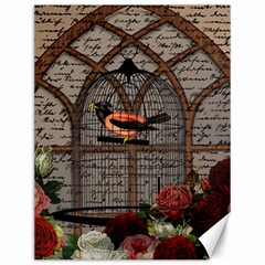 Vintage bird in the cage Canvas 12  x 16