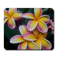 Premier Mix Flower Large Mousepads