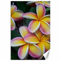 Premier Mix Flower Canvas 24  x 36