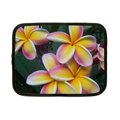 Premier Mix Flower Netbook Case (Small)