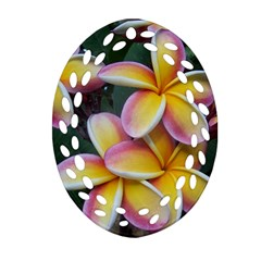 Premier Mix Flower Oval Filigree Ornament (Two Sides)