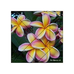 Premier Mix Flower Acrylic Tangram Puzzle (4  x 4 )