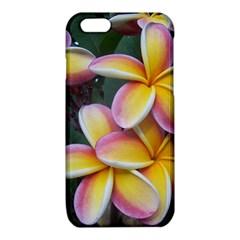 Premier Mix Flower iPhone 6/6S TPU Case