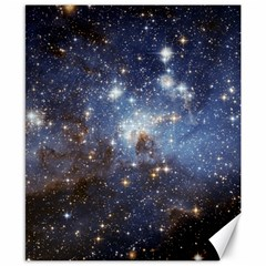 Large Magellanic Cloud Canvas 8  x 10