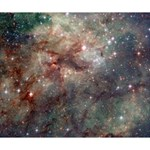 Tarantula Nebula Deluxe Canvas 14  x 11  14  x 11  x 1.5  Stretched Canvas