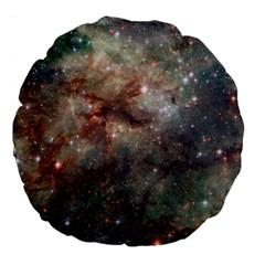 Tarantula Nebula Large 18  Premium Round Cushions