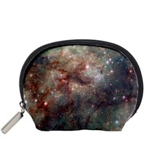 Tarantula Nebula Accessory Pouches (Small)