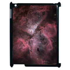Carina Peach 4553 Apple iPad 2 Case (Black)