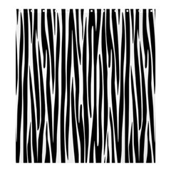 Zebra pattern Shower Curtain 66  x 72  (Large)