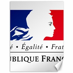 Symbol of the French Government Canvas 36  x 48