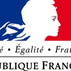 Symbol of the French Government Magic Photo Cubes