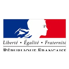 Symbol of the French Government Satin Shawl