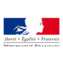 Symbol of the French Government Satin Wrap