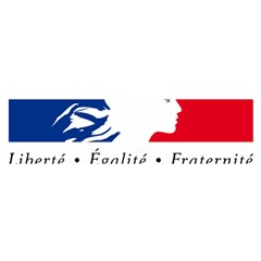Symbol of the French Government Satin Scarf (Oblong)
