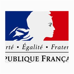 Symbol of the French Government Small Glasses Cloth