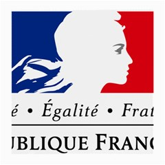 Symbol of the French Government Medium Glasses Cloth