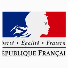 Symbol of the French Government Large Glasses Cloth (2-Side)