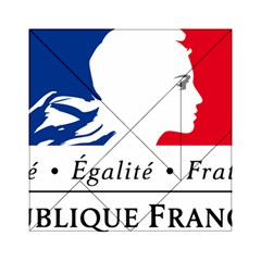 Symbol of the French Government Acrylic Tangram Puzzle (6  x 6 )