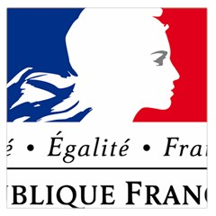 Symbol of the French Government Large Satin Scarf (Square)