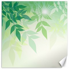 Spring Leaves Nature Light Canvas 12  x 12