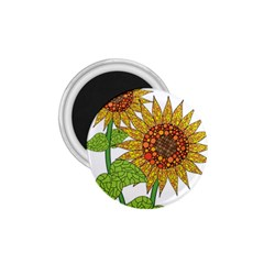 Sunflowers Flower Bloom Nature 1 75  Magnets