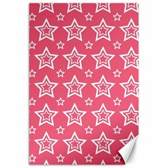 Star Pink White Line Space Canvas 20  x 30