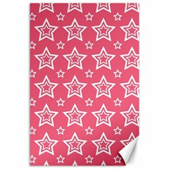 Star Pink White Line Space Canvas 24  x 36