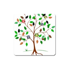Tree Root Leaves Owls Green Brown Square Magnet