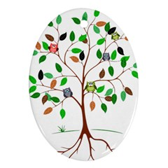 Tree Root Leaves Owls Green Brown Oval Ornament (Two Sides)