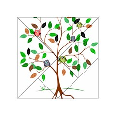 Tree Root Leaves Owls Green Brown Acrylic Tangram Puzzle (4  x 4 )