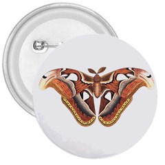 Butterfly Animal Insect Isolated 3  Buttons