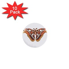 Butterfly Animal Insect Isolated 1  Mini Buttons (10 Pack)