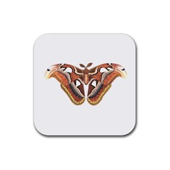 Butterfly Animal Insect Isolated Rubber Square Coaster (4 Pack)