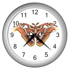 Butterfly Animal Insect Isolated Wall Clocks (Silver)
