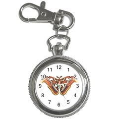 Butterfly Animal Insect Isolated Key Chain Watches