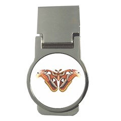 Butterfly Animal Insect Isolated Money Clips (round)