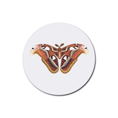 Butterfly Animal Insect Isolated Rubber Coaster (Round)