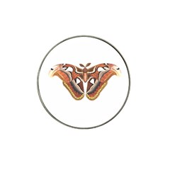 Butterfly Animal Insect Isolated Hat Clip Ball Marker