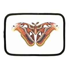 Butterfly Animal Insect Isolated Netbook Case (Medium)