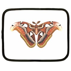 Butterfly Animal Insect Isolated Netbook Case (Large)