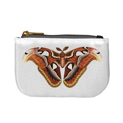 Butterfly Animal Insect Isolated Mini Coin Purses