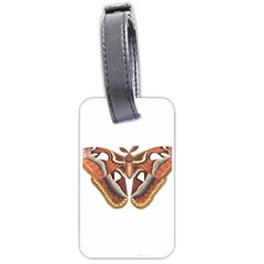 Butterfly Animal Insect Isolated Luggage Tags (One Side)