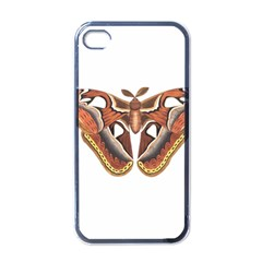 Butterfly Animal Insect Isolated Apple Iphone 4 Case (black)