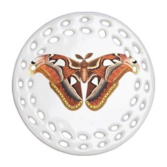 Butterfly Animal Insect Isolated Ornament (Round Filigree)